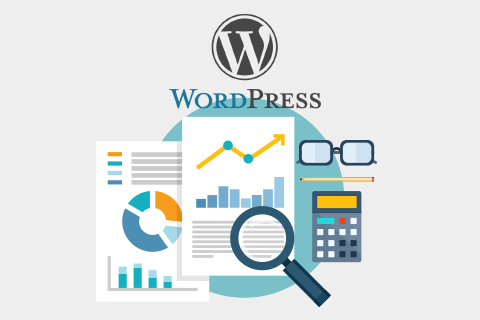 En İyi 10 WordPress Ziyaretçi İstatistik EklentileriEn İyi 10 WordPress Ziyaretçi İstatistik Eklentileri
